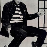 Elvis Presley 1982